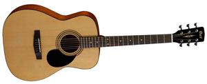 Гитара Cort AF510 OP