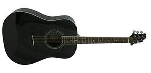 Акустическая гитара GregBennett D1 (BK)