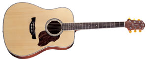 Акустическая гитара Crafter D-8