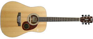 Акустическая гитара Cort Eearth 100 NS