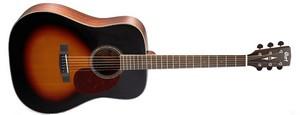 Акустическая гитара Cort Earth 100 SB
