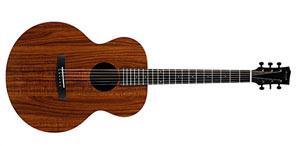 Акустическая гитара Enya EA-X1