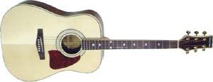 Акустическая гитара Martinez FAW-807