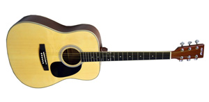 Акустическая гитара Homage LF-4121
