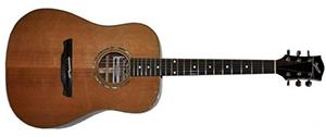 Электроакустическая гитара CUENCA W-100 B GZ/LM (E7)