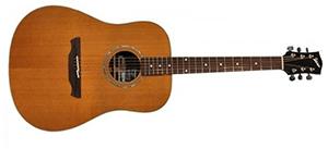 Электроакустическая гитара CUENCA W-300 B GZ/LP (E7)